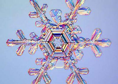 sneh-vlocka2