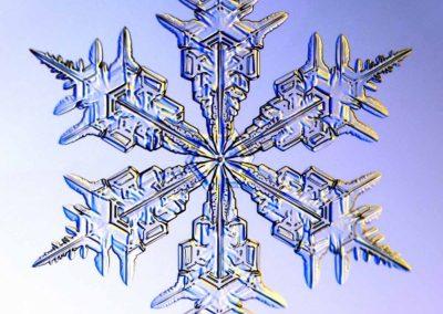 sneh-vlocka3