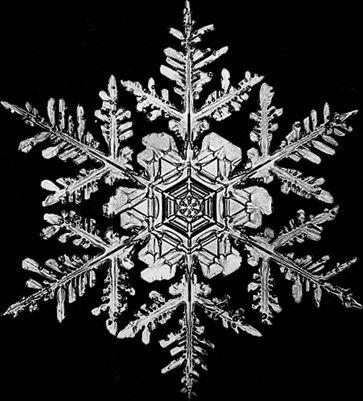 sneh-vlocka4