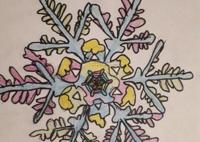 snehová vločka